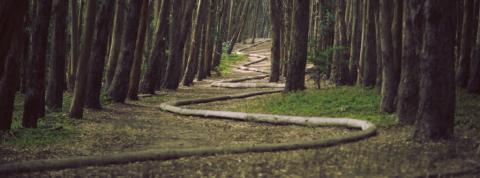 Prospecting: il percorso verso il Cliente.