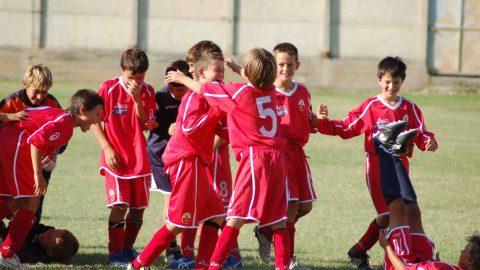 I Pilastri della Vendita: il gioco di squadra.