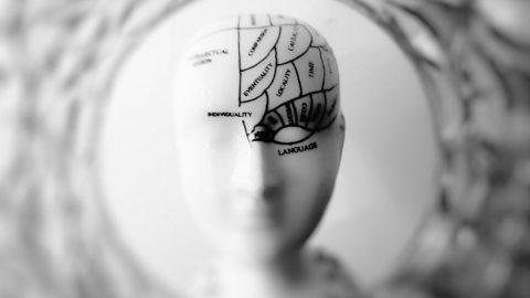 Voler Vendere: il potere della mente.
